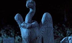 Твоя любимая птичка Муэрто. После того, как ты исчез, этого стервятника было уже не узнать. Отказывался кружить над трупами, перестал выклевывать глаза.