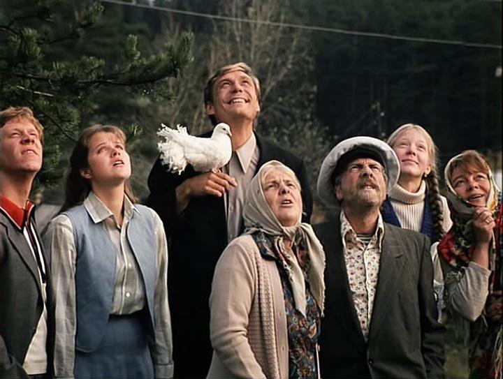 из любовь и голуби